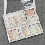 Комплект на выписку (10 предметов) (арт 12-40)