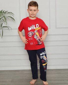 Пижама на мальчика (арт 10-38)